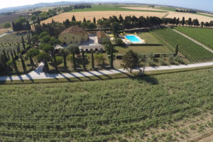 marketing per agriturismi caso studio di successo